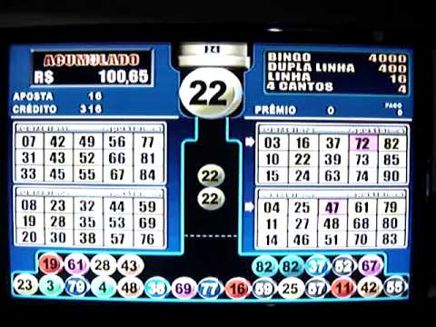 Treinamento para iniciantes bingo 68392